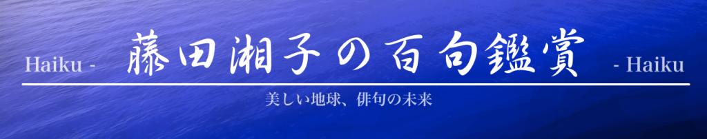 藤田湘子の百句鑑賞